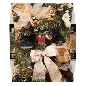 Stereoscope : CHRISTMAS TREE