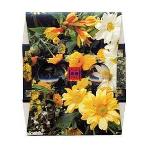 Stereoscope le bouquet de fleurs jaunes for Bouquet de fleurs jaunes