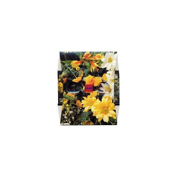 stereoscope le bouquet de fleurs jaunes. Black Bedroom Furniture Sets. Home Design Ideas
