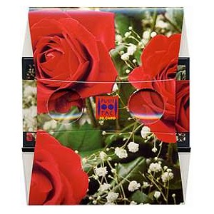 Stereoscope : THE BUNCH OF RED ROSES
