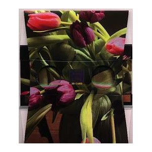 Stereoscope : THE BUNCH OF TULIPS