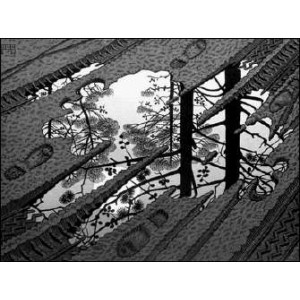 Stereoscope : ESCHER - PUDDLE (1952)