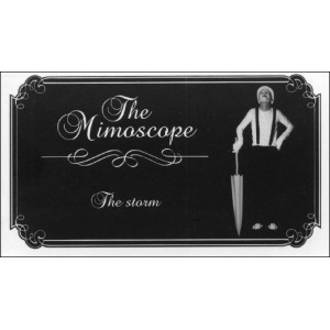 Flipbook : The Mimoscope : THE STORM