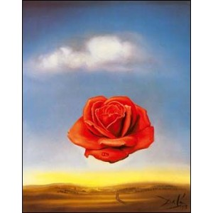 Stereoscope : DALI - MEDITATIVE ROSE