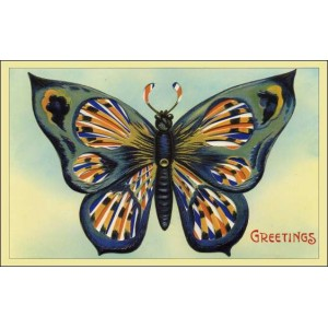 Postcard : BUTTERFLY MOVING CARD