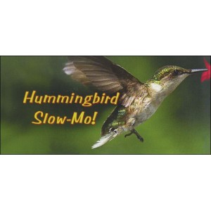 Flipbook : HUMMINGBIRD SLOW-MO!
