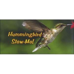 Flipbook : HUMMINGBIRD SLOW-MO!