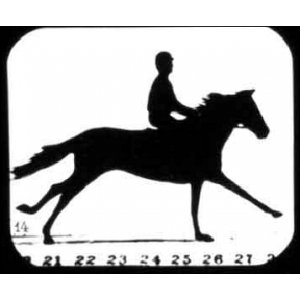 Flipbook : Man riding a horse named Florence A.
