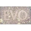 Flipbook : EVO