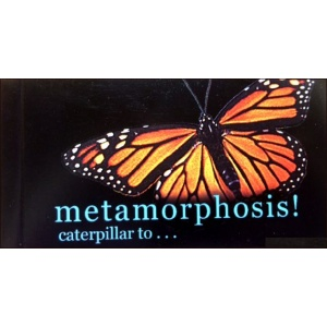 Flipbook : Metamorphosis !
