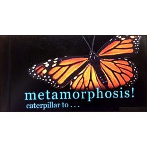 Flipbook : Metamorphosis !