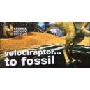 Flipbook : Velociraptor to Fossil! (Raptor in a Tar Pit !)