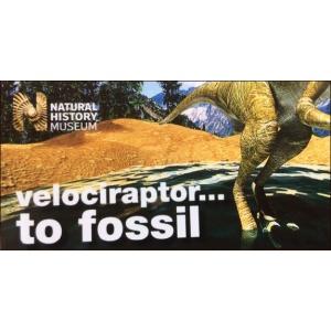 Flipbook : Velociraptor fossile ! (Raptor in a Tar Pit !)