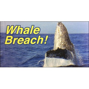 Flipbook : LE SAUT DE LA BALEINE (Whale Breach!)