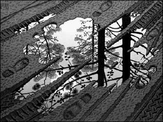 Puddle (1952) by ESCHER