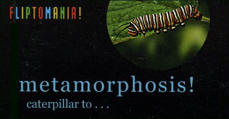 METAMORPHOSIS - un flipbook de Mark WEISSBERG (USA) - Couverture