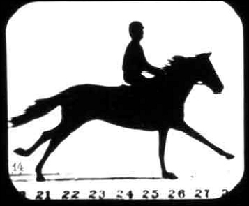 Man riding a horse named Florence A - a flipbook by MUYBRIDGE