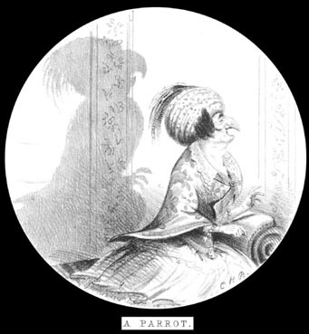 Le perroquet par Charles Henry BENNETT