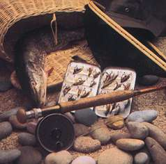 Fishing - stereoscopic view