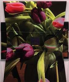 Un bouquet de tulipes - Visionneuse stéréoscopique