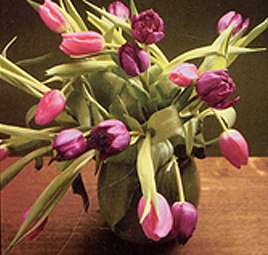 A bunch of tulips - stereoscopic view