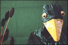 Duck Children - a film by Sam WALKER - image