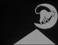 Tale About the Cat and the Moon - an animated film by Pedro SERRAZINA - Image