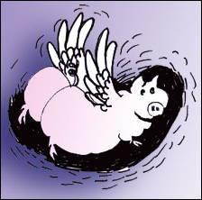 Logo des Editions du Rognon