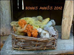 Voeux de l'année 2012 par Christine et Pierre JOUVANCEAU (France)