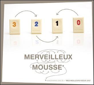 VOEUX 2013 du collectif Mr GENTIL (France)
