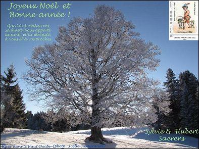 VOEUX 2013 de Sylvie et Hubert SAERENS (France)