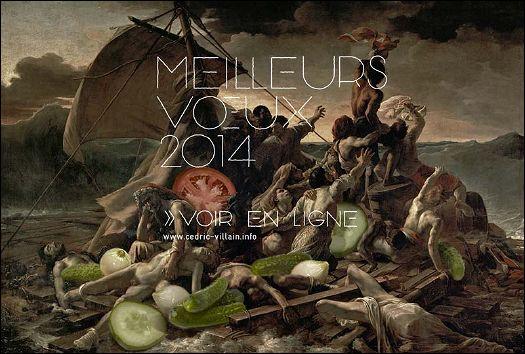 Voeux de l'année 2014 par Cédric VILLAIN (France)