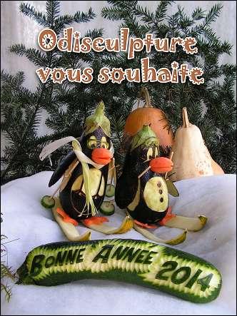 Voeux de l'année 2014 par Julie OUAGNE (France)